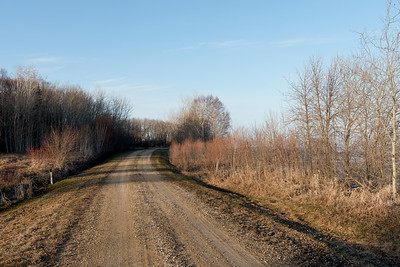Dirt road passing through Hecla Grindstone Provincial Park, Manitoba, Canada