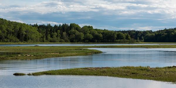 Scenic view of a river in forest, Ceilidh Trail, Mabou, Cape Breton Island, Nova Scotia, Canada