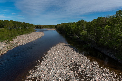 Scenic view of a river in forest, Petit Etang, Cabot Trail, Cape Breton Island, Nova Scotia, Canada