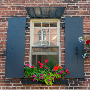Detail of a window with flowers, Charlottetown, Prince Edward Island, Canada