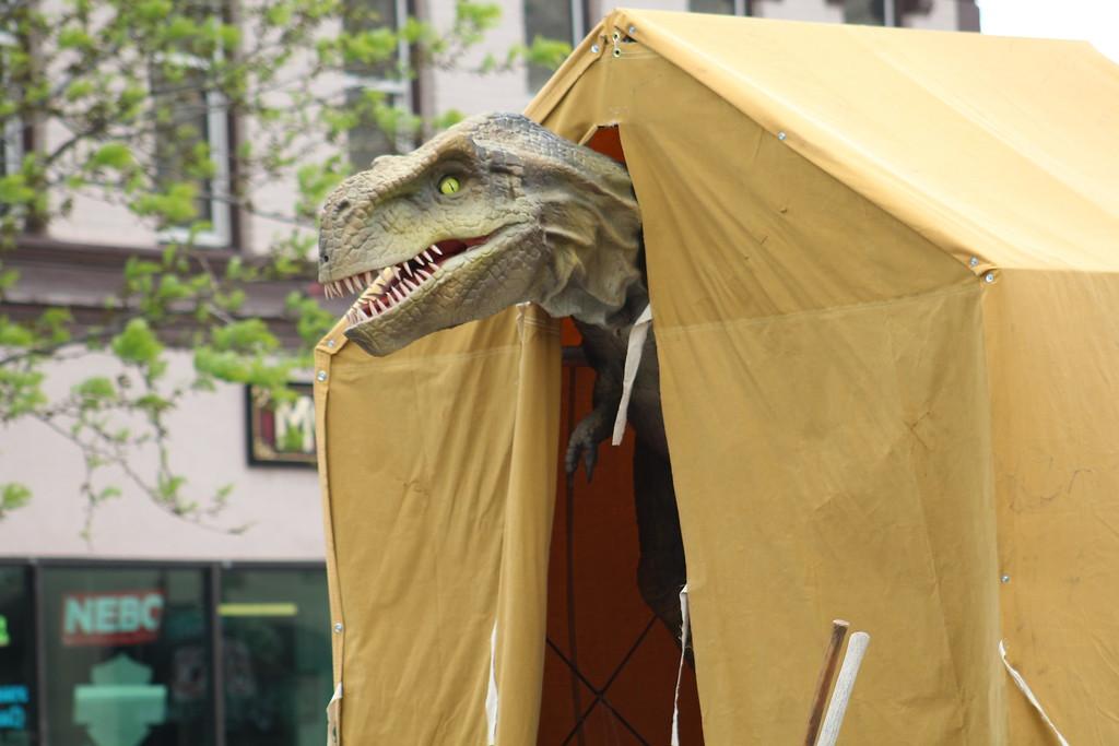 . The Royal Gorge Dinosaur Experience rides along Saturday through the 2017 Blossom Festival Parade.