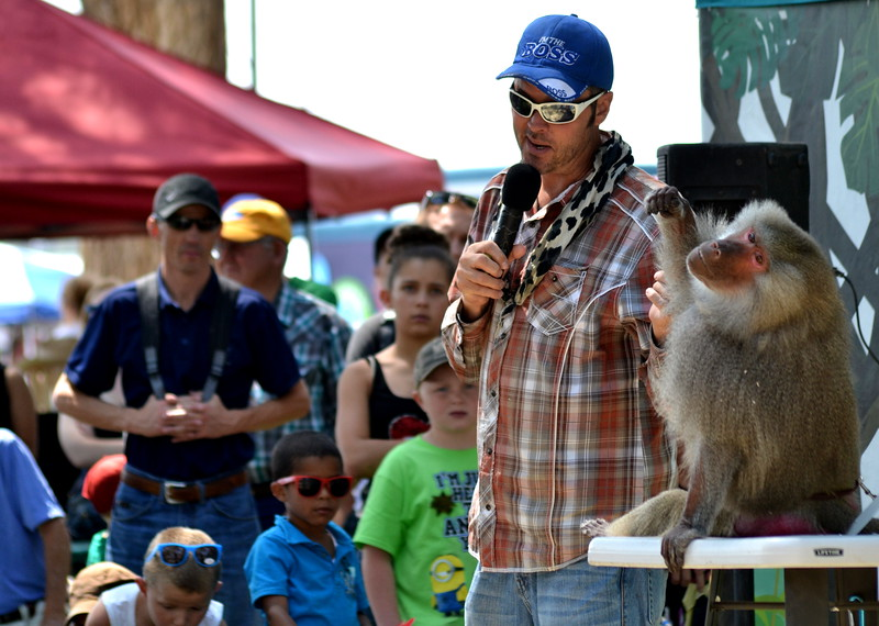 Kevin Keith with a baboon Saturday during the 'Wild about Monkeys' performance at the Colorado State Fair in Pueblo.
