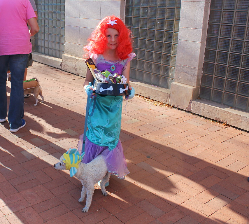 . Natalie Henry\'s dog, Max, won first place in the pet category at the Spook-Tacular and Trunk or Treat costume contest.