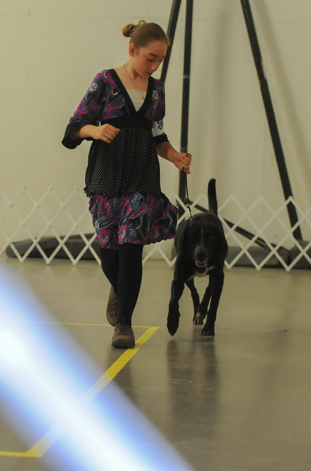 Emily Schmid during the dog show Wednesday at First Baptist Church in Florence.