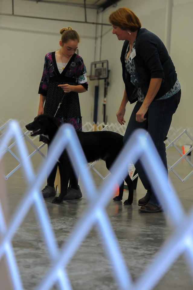 Emily Schmid with her dog Wally during the dog show Wednesday at First Baptist Church in Florence.