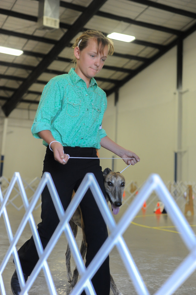 Alafair Sheridan during the dog show Wednesday at First Baptist Church in Florence.