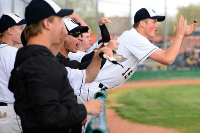 Tigers players celebrate during their game against Pueblo County Monday at Justin Field. Jeff Shane/ Daily Record