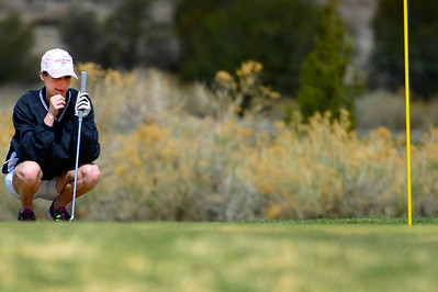 Tigers golfer Allie Bryant competes during the Tiger Invitational Monday at the Shadow Hills Golf Course. Jeff Shane/ Daily Record
