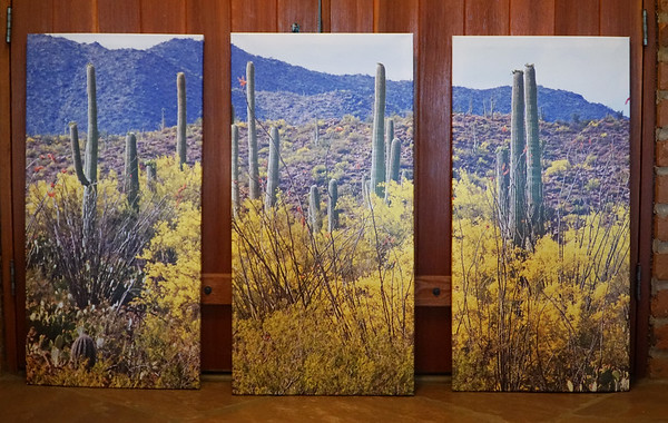EACH PEICE IS 20 X 40  COST FOR ALL 3 $375.00