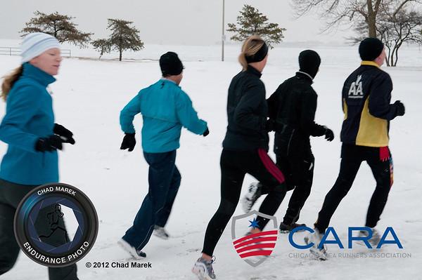 CARA Training - 2012