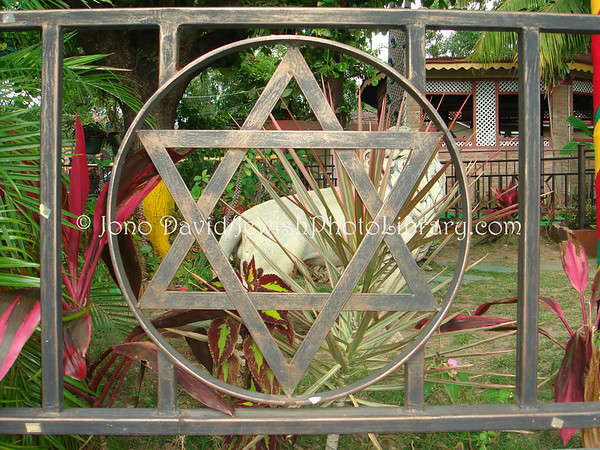 JAMAICA, Kingston. Magen David (Star of David) @ Bob Marley Museum. (2008)