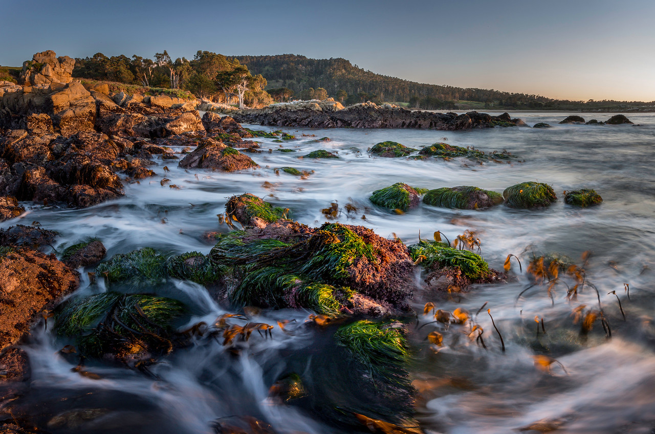 Monastery Beach seascape
