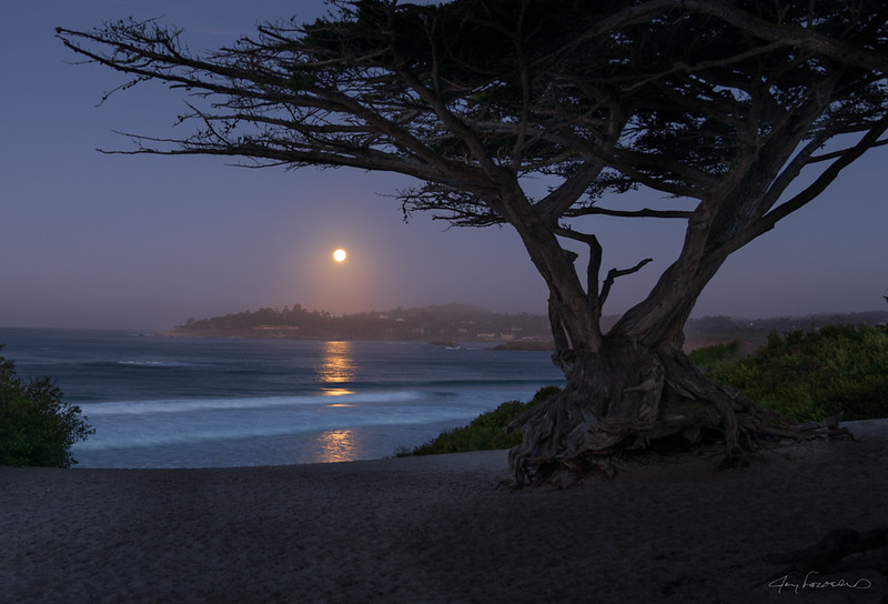 Pebble Beach Moonset