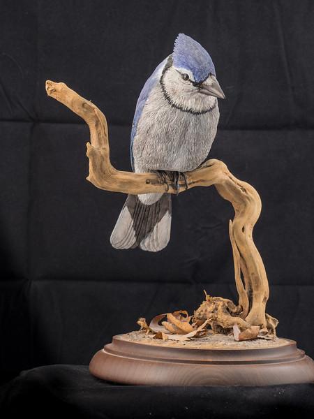 Blue Jay by Kevin Hofman 6/87 11.75 x 9.5 x 8 inch