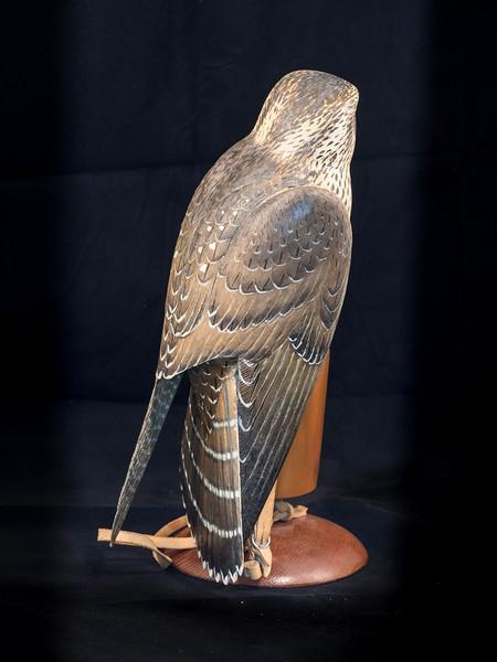 Peregrine Falcon by F. L. Beebe 10.5x7x6 INCH