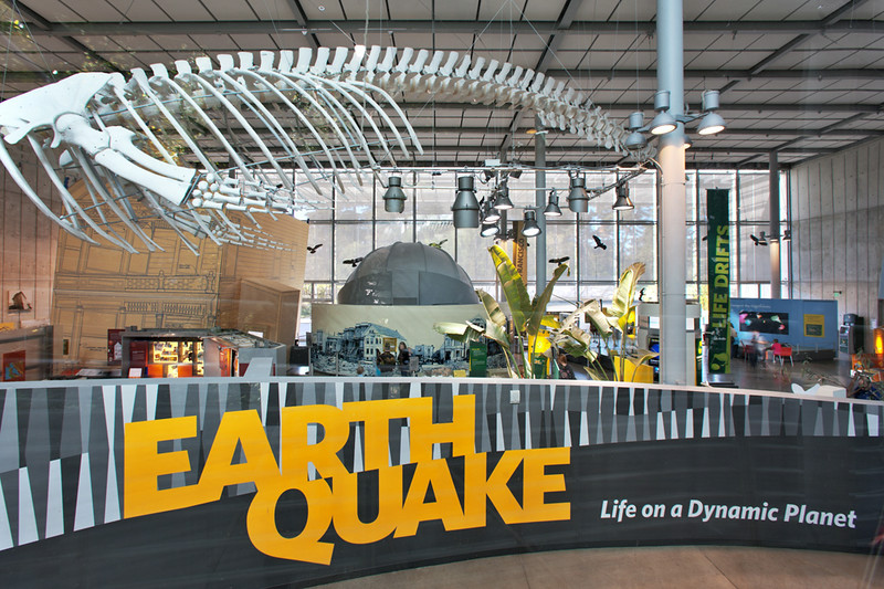 """Earthquake"" exhibit"