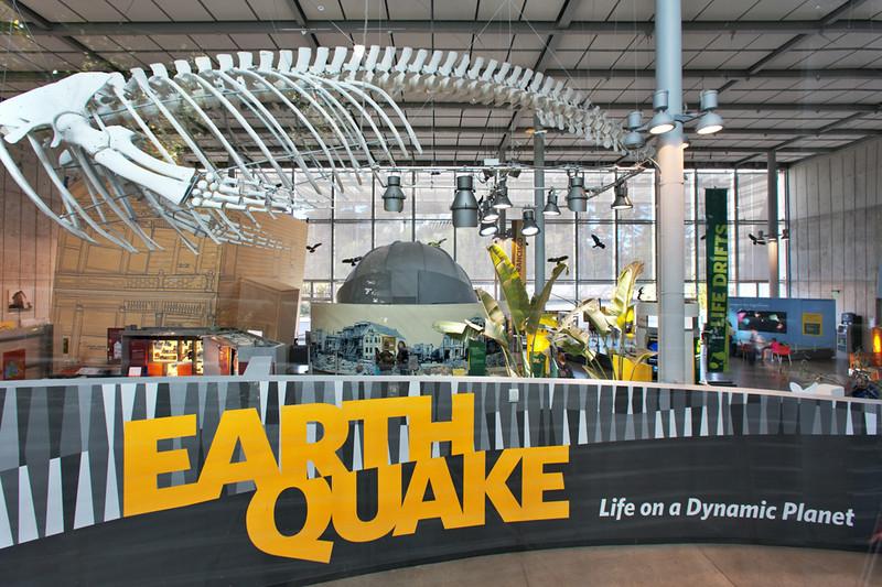 """""""Earthquake"""" exhibit"""