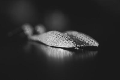 aar_make-31