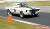 #146 Mustang at speed T3