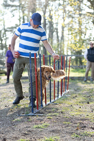 Dogs March April 2019-7285