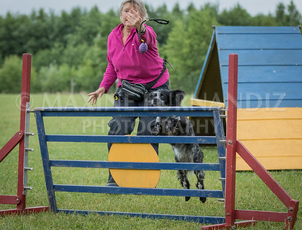 Agility & Water Day 29 June 2017-6466