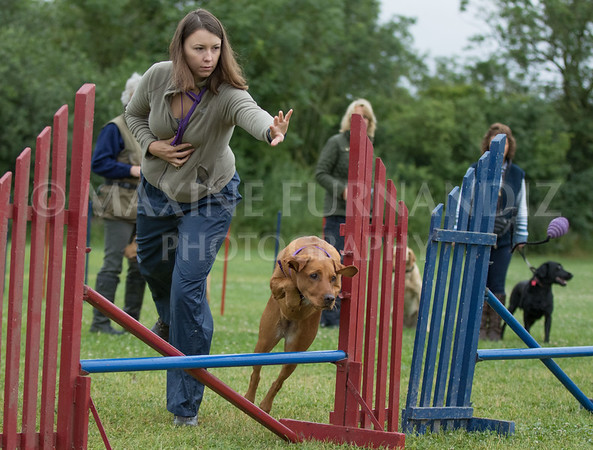 Agility & Water Day 29 June 2017-6337
