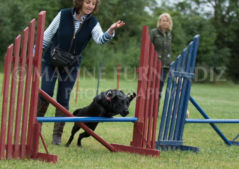 Agility & Water Day 29 June 2017-6349