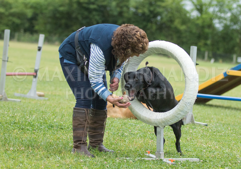 Agility & Water Day 29 June 2017-6447
