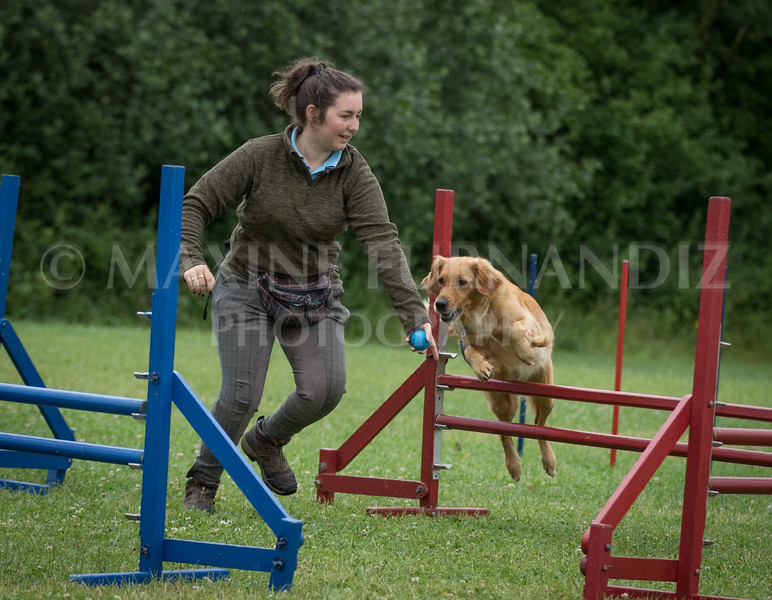 Agility & Water Day 29 June 2017-6559