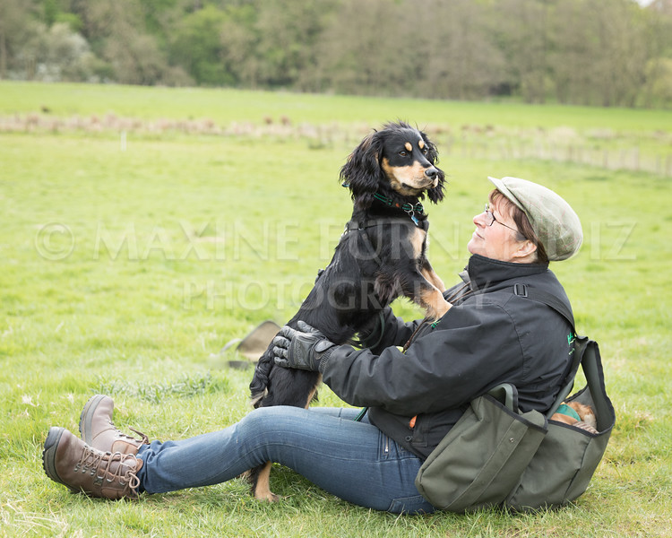 Spaniel Cocker Grp April 2017-2457-Edit