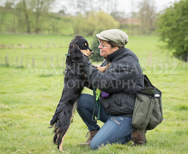 Spaniel Cocker Grp April 2017-2432-Edit