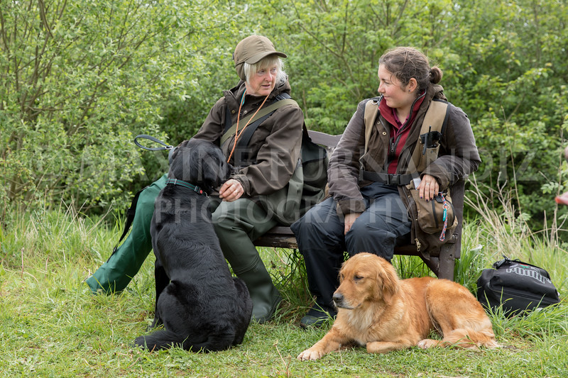 Novice Gundog May 2017-4232