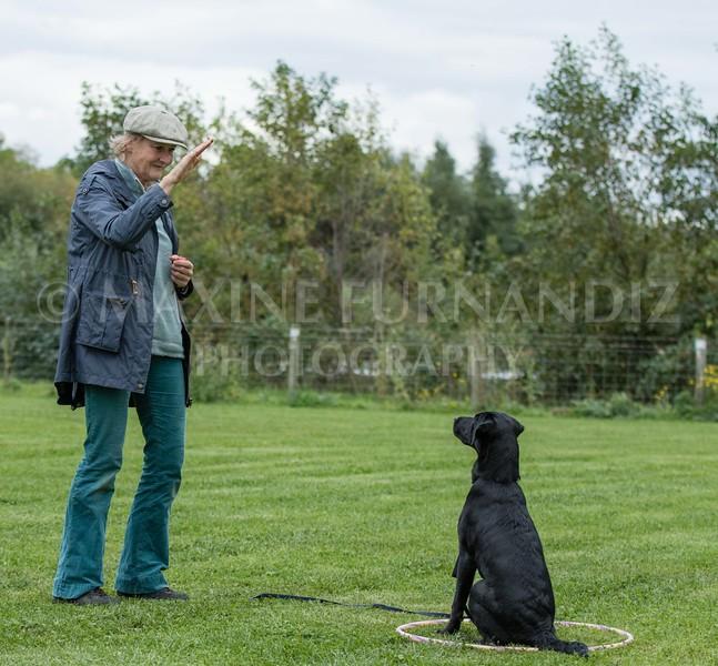 Puppy 30 Sept 2017-0255