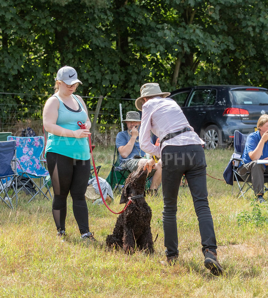 Puppy Workshop July 2018-9850