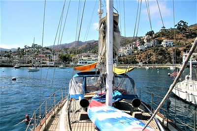 Anchored in Avalon Harbor