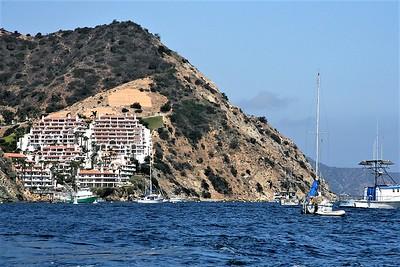 Condos at Catalina
