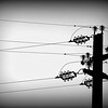 Electricity Pole in Tuscany