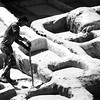 Working in the Tanneries of Fes