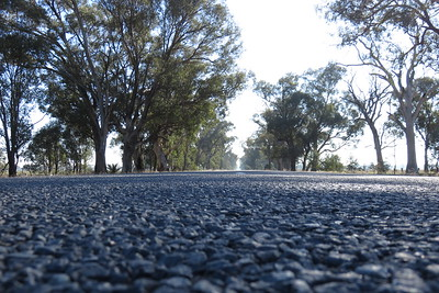 Road surface of C375 Federation Road.
