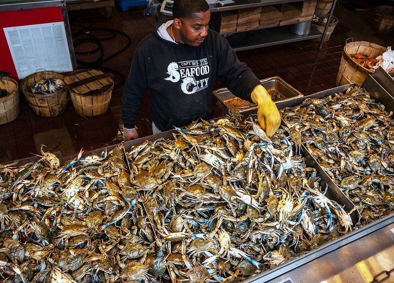 Crab City