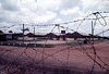 THROUGH THE WIRE. CONCERTINA WIRE WAS THE DEFINING IMAGE OF OUR PRESENCE IN VIETNAM