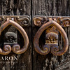 C-Baron-Agave-Real-Bridals-103
