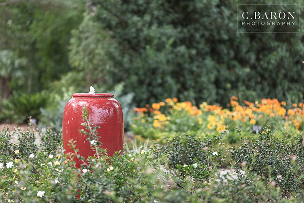 Beautiful Summer family portrait session at Mercer Botanical Gardens in Humble, Texas
