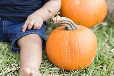 Fun children's session at a pumpkin patch in the Houston Texas area