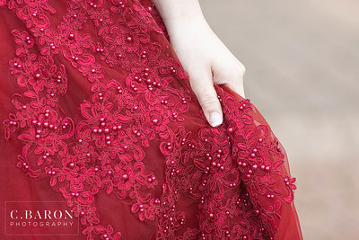 Beautiful red gown Quinceanera portrait session in Houston, Texas