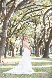 Gorgeous Fall Bridal session at Rice University in Houston Texas Medical Center area