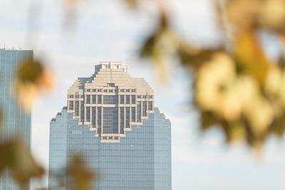 Houston Engagement session near downtown Houston
