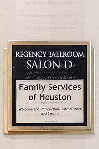 C-Baron-Photo-Family-Services-Houston-Marriage-Project-136 (Large)