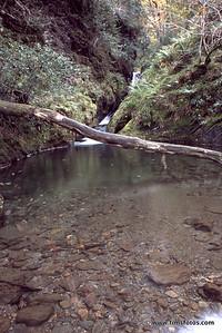 Pool at base of waterfall