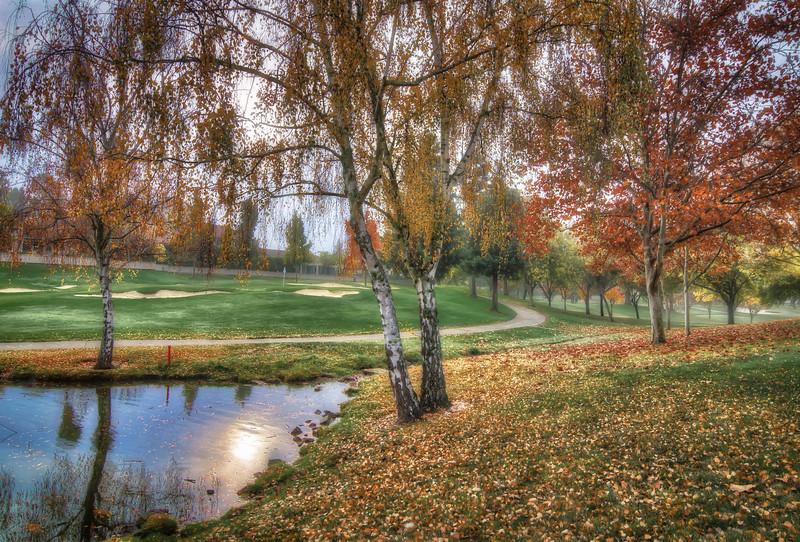 Greenside Pond on 15th Hole.